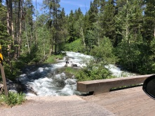 Crossing my bridge to Jackson Hole